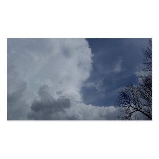 Nube de cumulonimbus de Hailmaker Tarjeta De Negocio