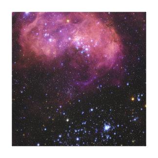 Nube de la región N11 Magellanic de la formación e Lona Envuelta Para Galerías