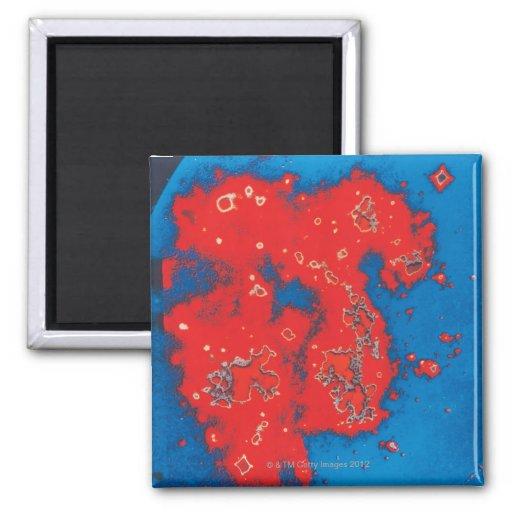 Nube de Magellanic grande Imanes De Nevera