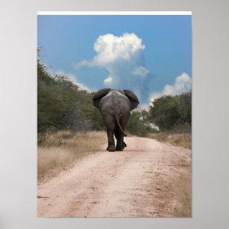 nube del elefante póster