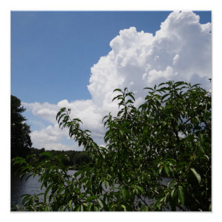 Nubes blancas mullidas del árbol de melocotón de G Poster