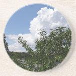 Nubes blancas mullidas del árbol de melocotón de G Posavasos Manualidades