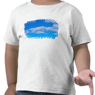 nubes de cúmulo sobre el antártico occidental camisetas