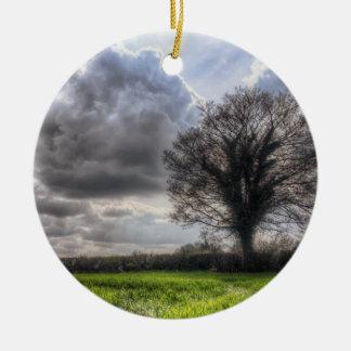 Nubes de lluvia en la primavera HDR Adorno Para Reyes