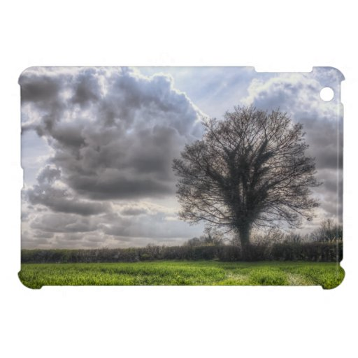 Nubes de lluvia en la primavera HDR iPad Mini Carcasa