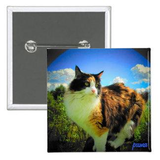 Nubes del cielo del gato de calicó del puma pin cuadrada 5 cm
