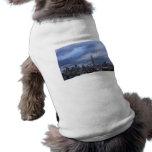 Nubes dramáticas del Empire State Building Camisetas Mascota