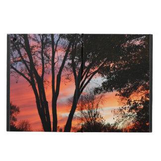 Nubes en la puesta del sol a través de los árboles
