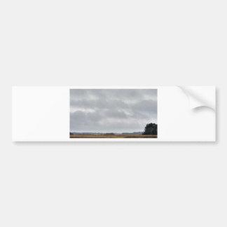 nubes grises sobre pantano pegatina para auto
