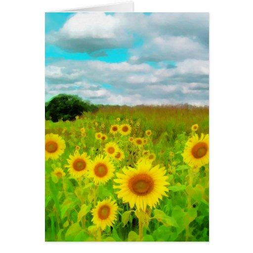 Nubes hoy, tarjeta del girasol, fotografía de la n