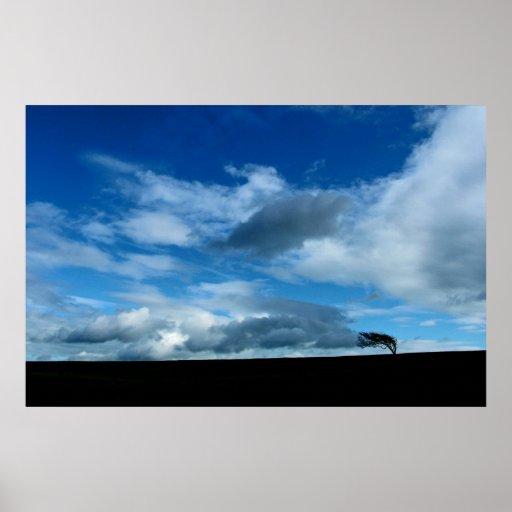 nubes y árbol póster