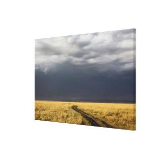 Nubes y camino de tormenta a través de los llanos  impresión en lona