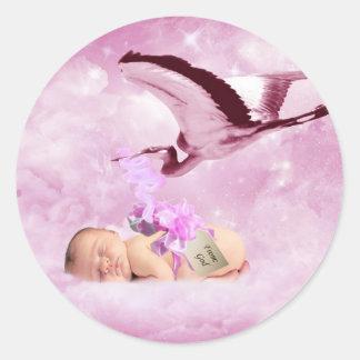 Nubes y cigüeña rosadas de la niña pegatina redonda