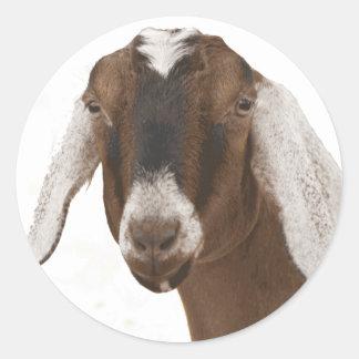 Nubian Classic Round Sticker