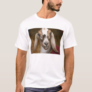 Nubian Dairy Goat Doe White Stripe Caprine T-Shirt