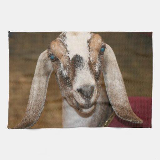 Nubian Dairy Goat Doe White Stripe Caprine Towels