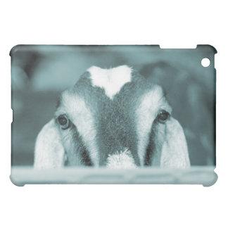 Nubian doe bw blue peeking over wooden rail iPad mini case
