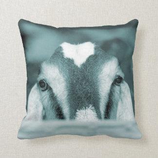 Nubian doe bw blue peeking over wooden rail pillow