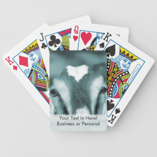 Nubian doe bw blue peeking over wooden rail bicycle playing cards