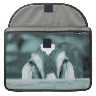 Nubian doe bw blue peeking over wooden rail sleeve for MacBooks