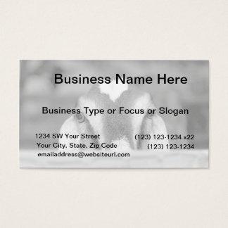 Nubian doe bw peeking over wooden rail.jpg business card