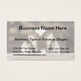 Nubian doe bw sepia peeking over wooden rail business card