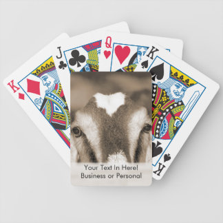 Nubian doe bw sepia peeking over wooden rail bicycle playing cards