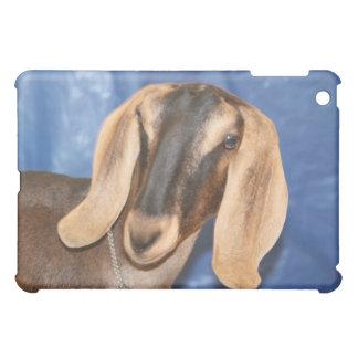 Nubian doe head against blue cover for the iPad mini