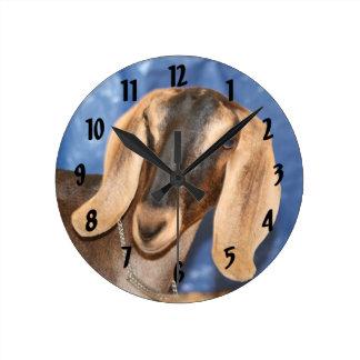 Nubian doe head against blue round clock