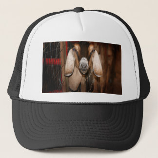 Nubian doe head on getting out of gate trucker hat