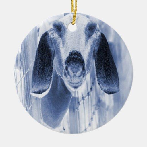 Nubian doe head on invert ornament