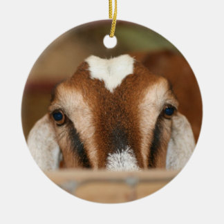 Nubian doe peeking over wooden rail ceramic ornament