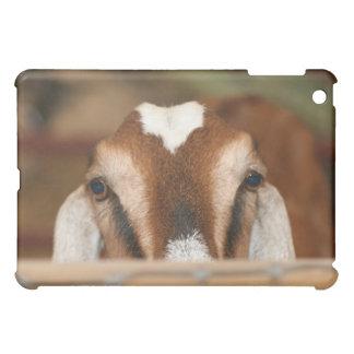 Nubian doe peeking over wooden rail iPad mini cases