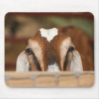 Nubian doe peeking over wooden rail mouse pad