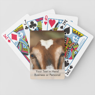 Nubian doe peeking over wooden rail bicycle playing cards