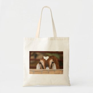 Nubian doe peeking over wooden rail tote bag