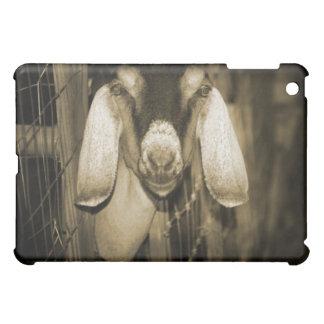 Nubian doe sepia head on getting out of gate iPad mini covers