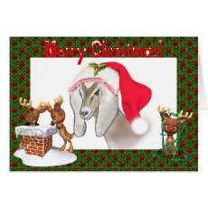 Nubian Goat Art Christmas Card