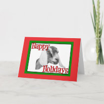 Nubian Goat Holiday Christmas