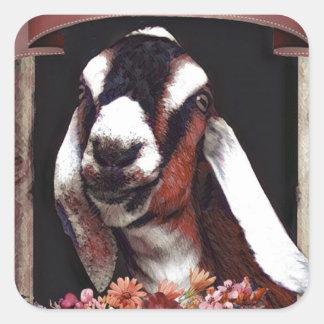 Nubian Goat Square Sticker