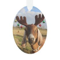 Nubian Reindeer Xmas Ornament