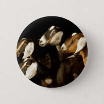 Nubians Does Focused Pinback Button