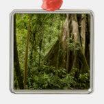 Núblese el bosque, Bosque de Paz, Costa Rica Adorno Navideño Cuadrado De Metal