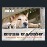 """NUBZ NATION 2019 Calendar in 3 sizes<br><div class=""""desc"""">12 months of NUBZ PAWSOMENESS!!! &quot;Nubz&quot;, as this precious Chow mix was named, was rescued from a terrible beginning as an infant, when it was discovered he had no hind feet. To make a long and touching story short, with rehabilitation and prosthesis for his back legs, Nubs is living the...</div>"""