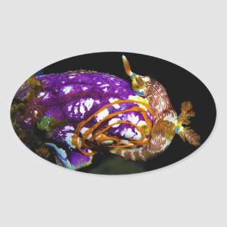 Nudibranch Laying Egg Sea Squirt Polycarpa Aurata Oval Sticker