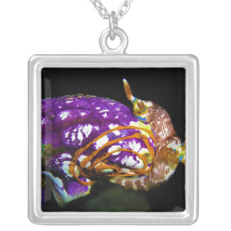 Nudibranch Laying Egg Sea Squirt Polycarpa Aurata Square Pendant Necklace