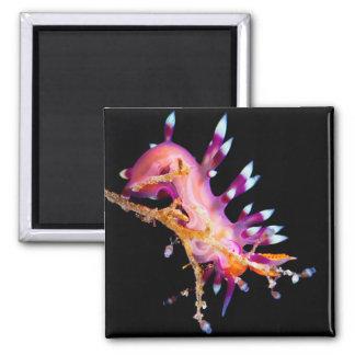Nudibranch Square Magnet