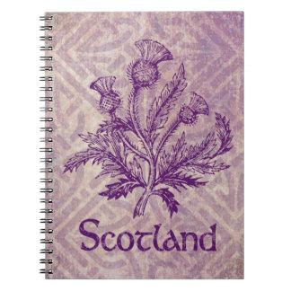Nudo céltico púrpura del cardo escocés libros de apuntes