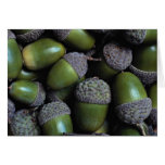 Nueces de bellota verdes tarjetón
