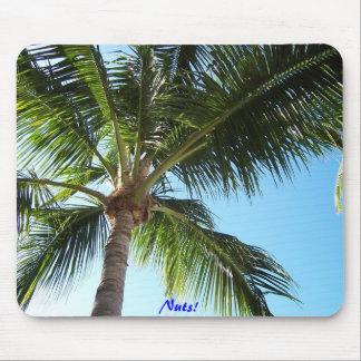 ¡Nueces de Key West! Alfombrillas De Ratones